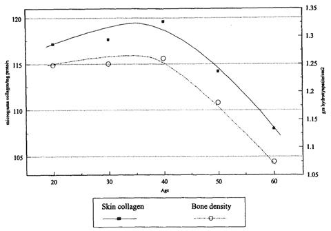 加齢に伴うヒト皮膚中コラーゲン量と骨密度の変化の図