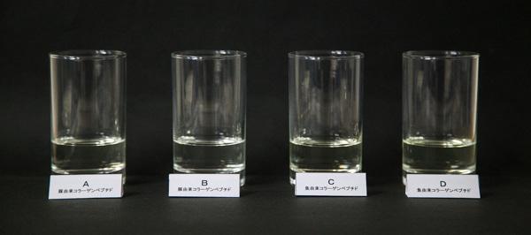 豚コラーゲン魚コラーゲンの溶解温度の違いの画像