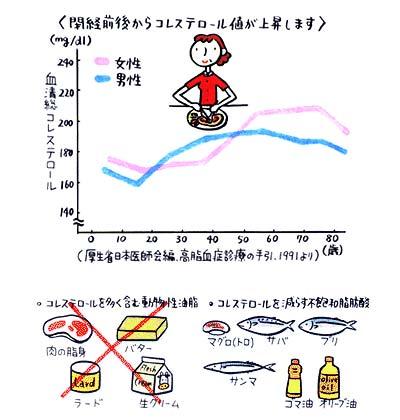 閉経前後のコレステロールの数値のグラフ