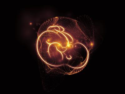 胎盤と胎児の画像