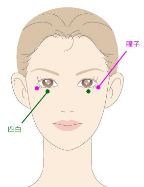 瞳子(どうし)りょうと四白(しはく)の位置の画像