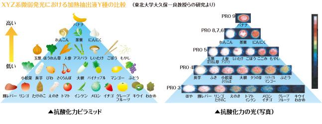 抗酸化食品のピラミッド画像