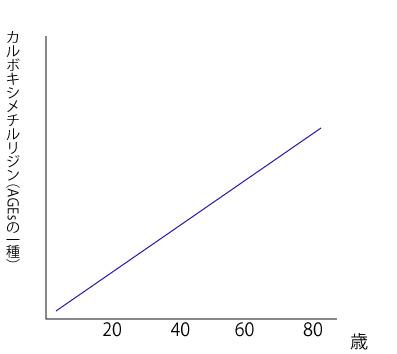 年齢による健常者と糖尿病患者のAGEsの量の違いのグラフの画像
