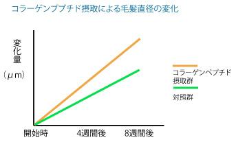 コラーゲンペプチド摂取による毛髪直径の変化のグラフの画像