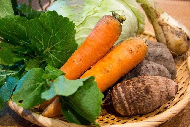 根菜の画像