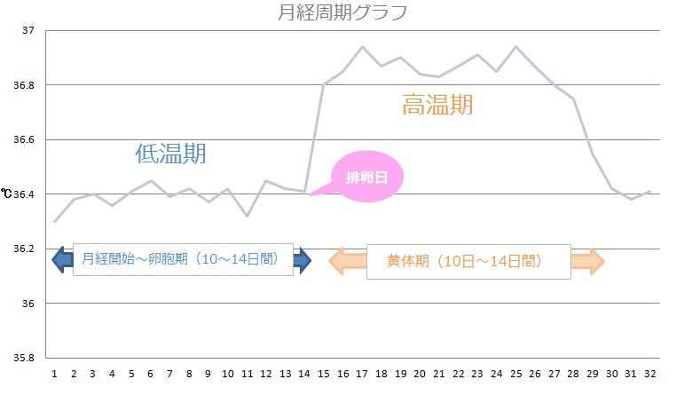月経周期のグラフの画像