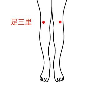 足三里のツボの画像