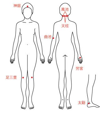 自律神経のツボの画像