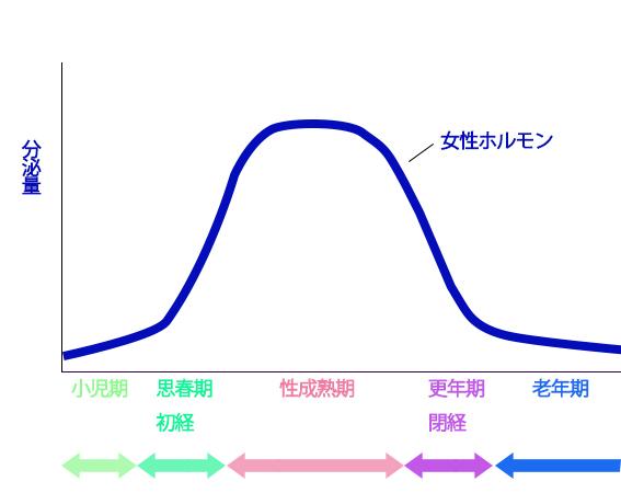 エストロゲン分泌量の変化の画像