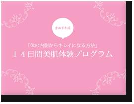 kimeyaka_pdf1