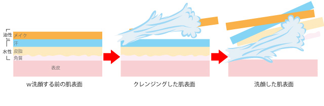 W洗顔の肌表面の画像