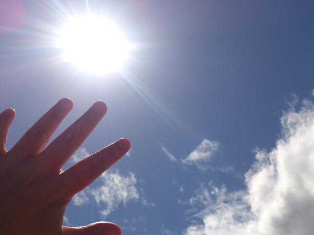 日差しと手の画像