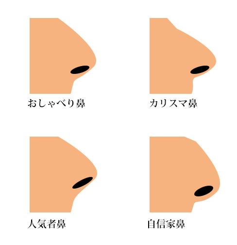 鼻毛が見える鼻の形の画像