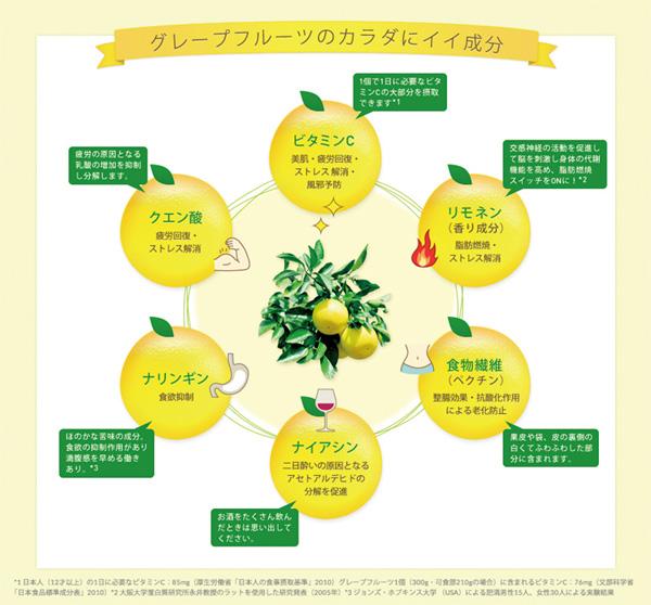グレープフルーツの成分の画像