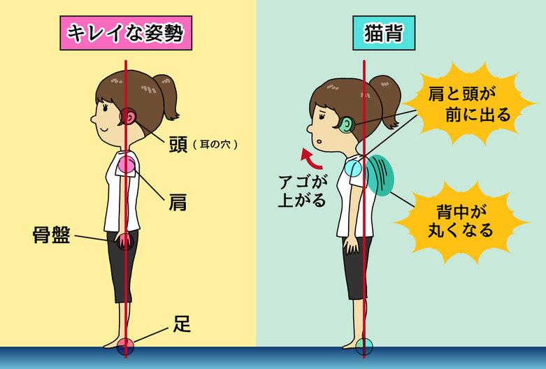 正しい姿勢の画像