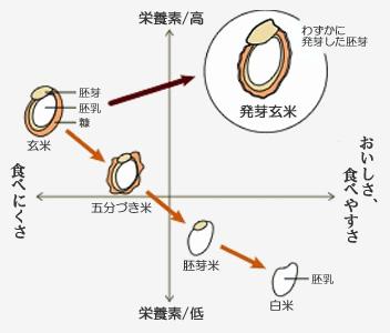 発芽玄米の画像