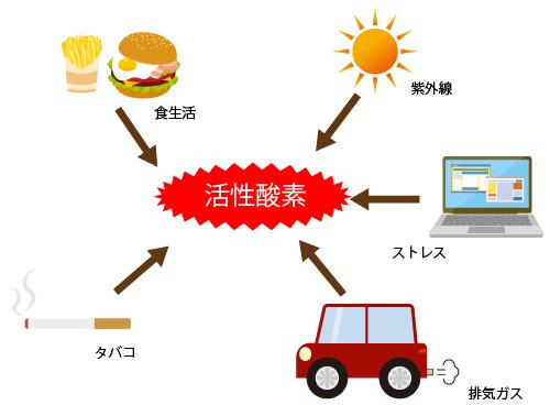 活性酸素が発生する要因の画像