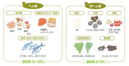 鉄分の食材の画像