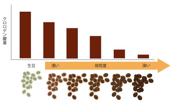 焙煎で減るクロロゲン酸の画像
