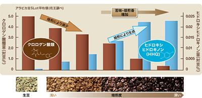 焙煎したコーヒー豆の成分の画像