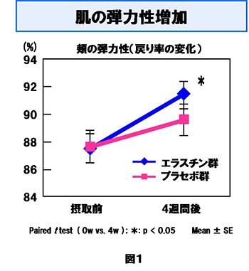エラスチンの肌弾力実験結果の画像