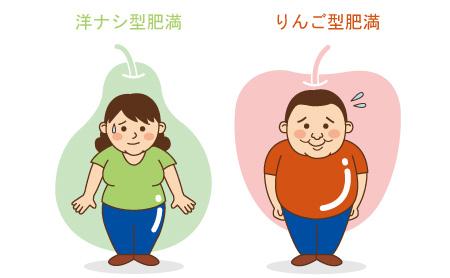 洋ナシ体型とりんご体型の画像