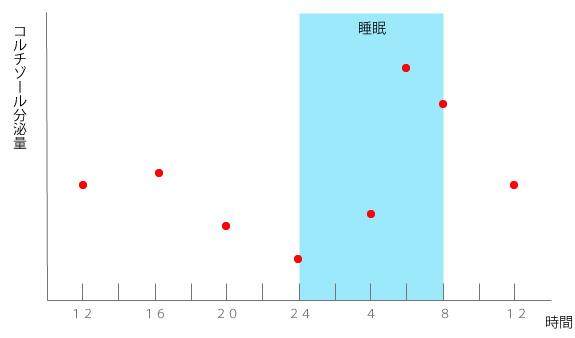 コルチゾール分泌量のグラフの画像