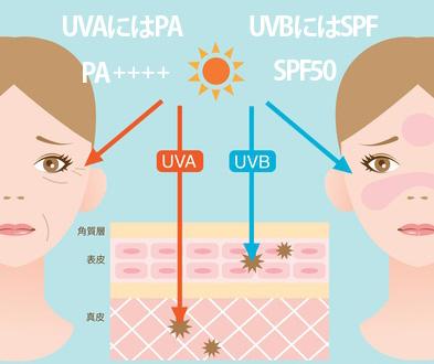 紫外線の種類と日焼け止めの表示の画像
