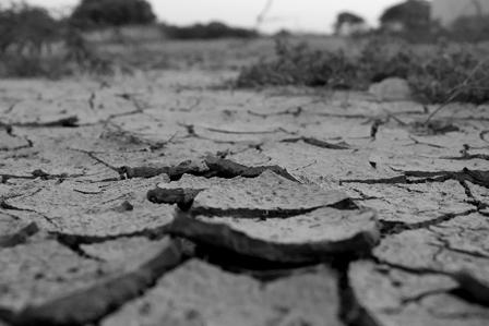 乾燥の画像