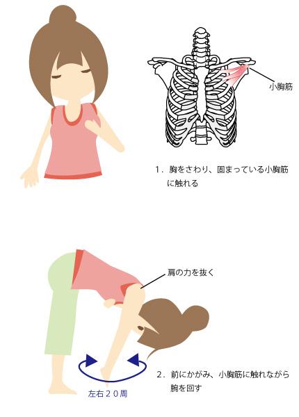 巻き肩を治す方法の画像