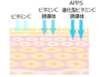 APPSビタミンCの画像