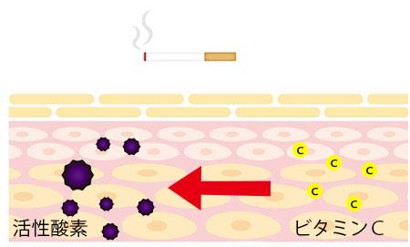 活性酸素とビタミンの画像