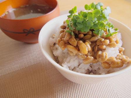 納豆のご飯の画像