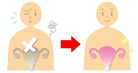 子宮の画像