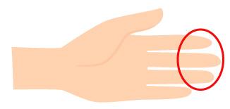 指の腹の画像